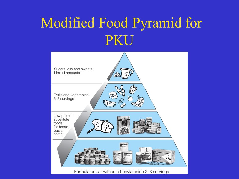 PKU Food pyramid